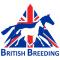 BRITISHBREEDING