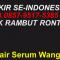 supplier.hair.serum.wangi